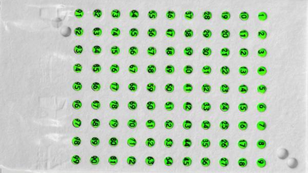 Numere pentru matci culoarea verde, din Cehia