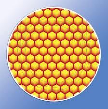 Крышка твист-офф 66 мм, соты